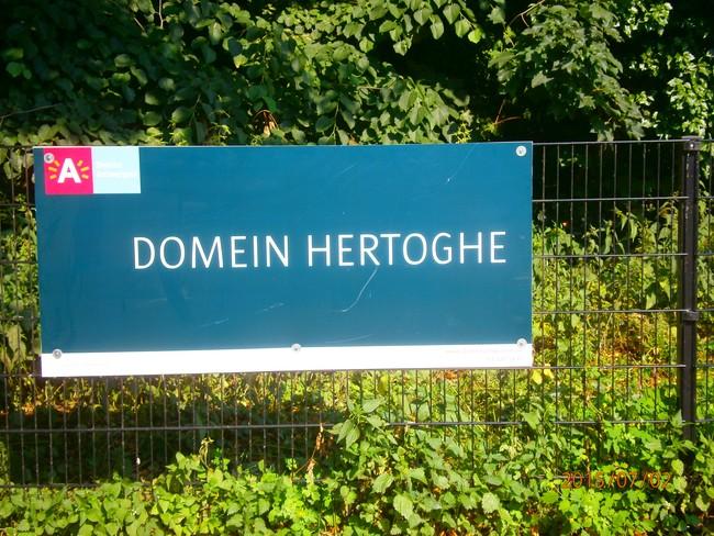 Afbeeldingsresultaat voor domein hertoghe