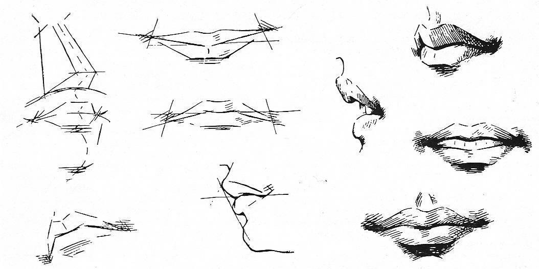 profiel gezicht tekenen
