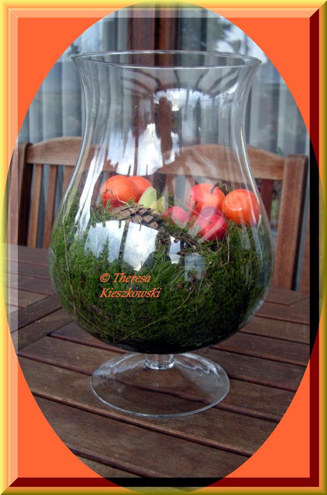Amaryllis in pot omwikkel de amaryllis bol met mos tot for Amaryllis en pot interieur