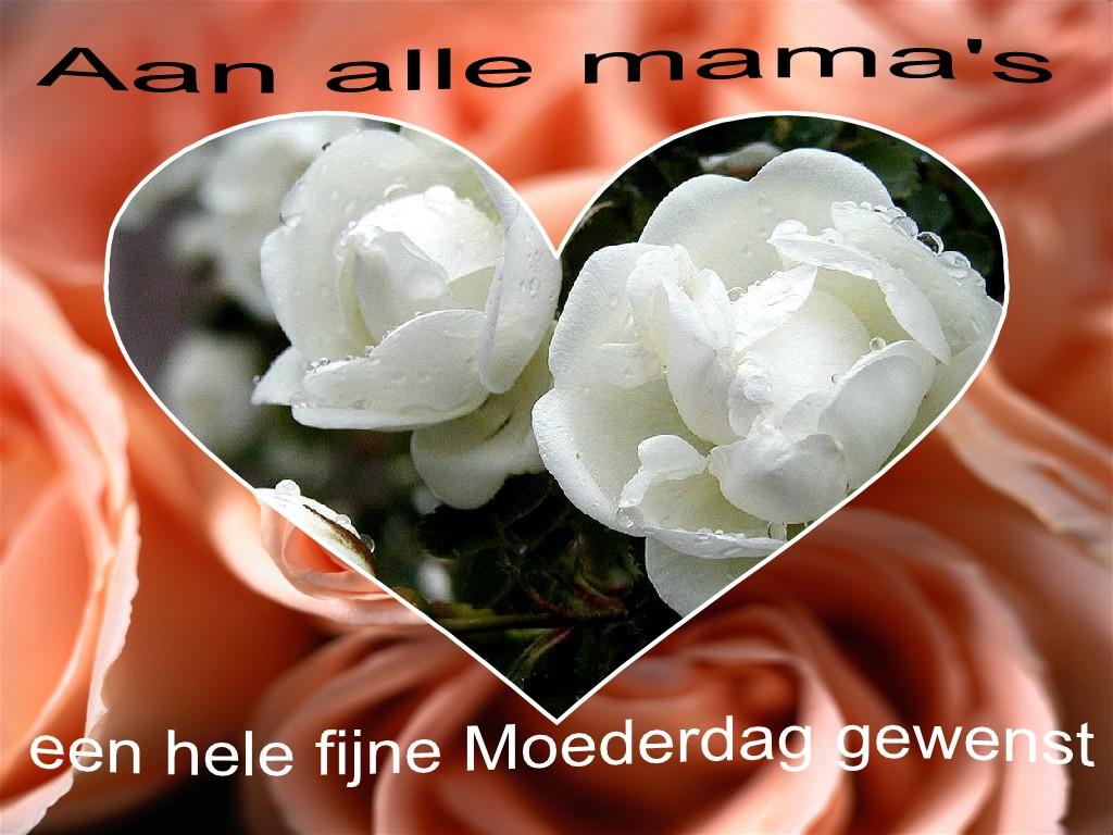 Afbeeldingsresultaat voor een fijne moederdag aan alle mama's