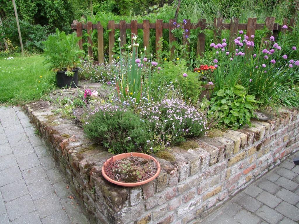Huis design - Idee van allee tuin ...